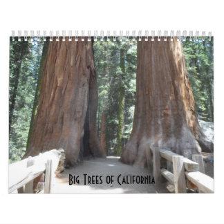 Big Trees of California 2019 Calendar