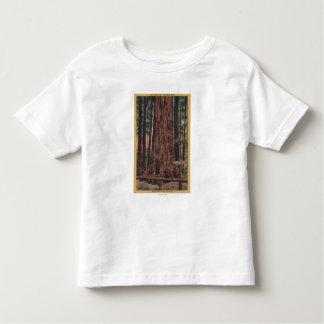 Big Trees State Park, CA - Neck Breaker Tree Toddler T-shirt