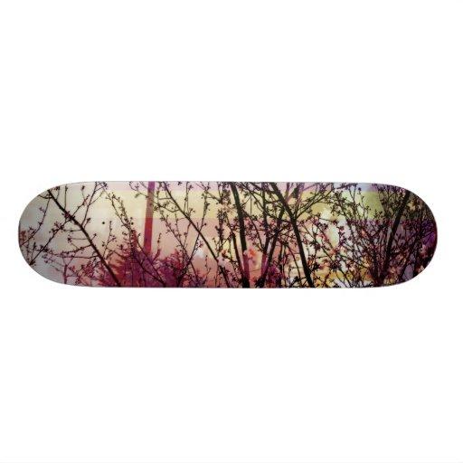 big treez skate board decks