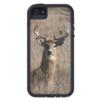 Big Trophy Buck Deer Camo iPhone 5 Case