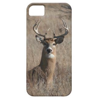 Big Trophy Buck Deer in Tall Grass Camo iPhone SE/5/5s Case