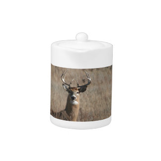 Big Trophy Buck Deer in Tall Grass Camo