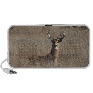 Big Trophy Buck Deer in Tall Grass Camo Travel Speaker