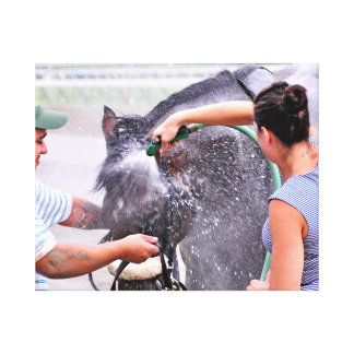 Big Trouble wins the 100th Sanford Stakes Canvas Print