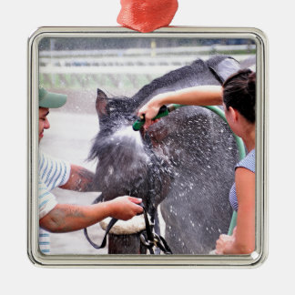 Big Trouble wins the 100th Sanford Stakes Metal Ornament