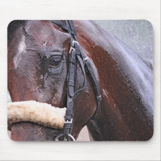 Big Trouble wins the 100th Sanford Stakes Mouse Pad
