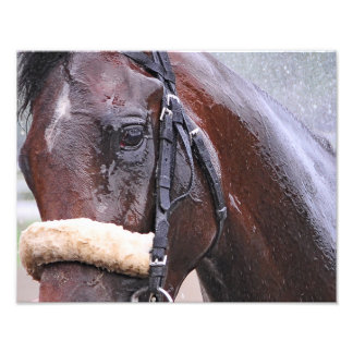 Big Trouble wins the 100th Sanford Stakes Photographic Print