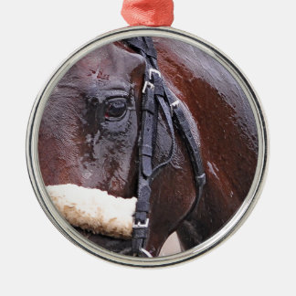 Big Trouble wins the 100th Sanford Stakes Round Metal Christmas Ornament