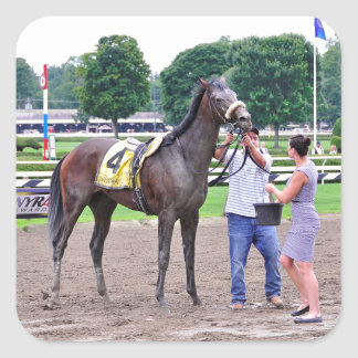 Big Trouble wins the 100th Sanford Stakes Square Sticker