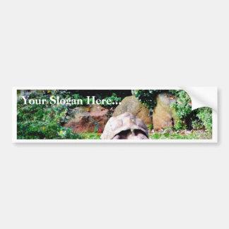 Big Turtle Bumper Sticker