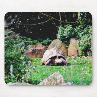 Big Turtle Mouse Pad