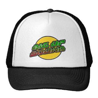 Big up Sound Dub Dubstep Reggae Trucker Hat