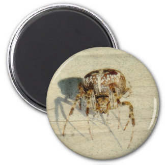 Big, Very, Scary, Hairy Spider 2 Inch Round Magnet