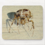 Big, Very, Scary, Hairy Spider Mousepad