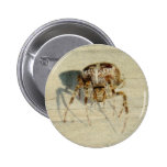 Big, Very, Scary, Hairy Spider Pinback Button