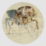Big, Very, Scary, Hairy Spider Stickers
