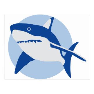 big white shark post card