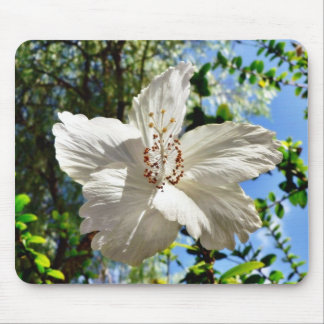 Big White Tree Flower Mouse Pad