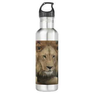 Big Wild Cat Stainless Steel Water Bottle