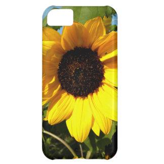 Big Yellow iPhone 5C Covers