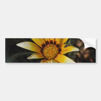 Big yellow daisy car bumper sticker