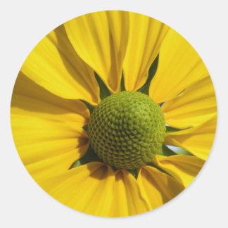 Big Yellow Flower Classic Round Sticker