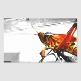 big yellow grasshopper abstract photo edit rectangular sticker