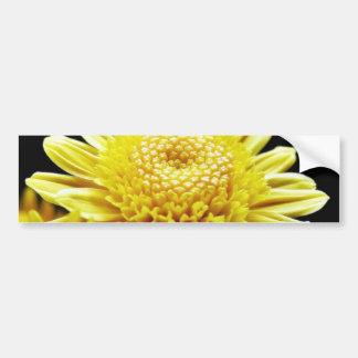 Big Yellow Mums Car Bumper Sticker