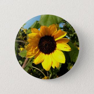 Big Yellow Pinback Button