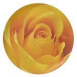 Big Yellow Rose Dinner Plates