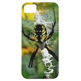 Big Yellow Spider iPhone 5 Case