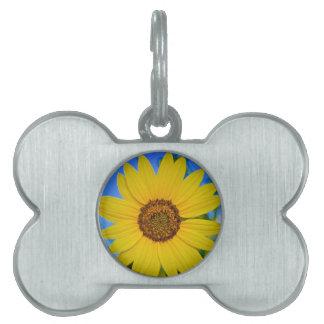 Big Yellow Sunflower Pet Tags