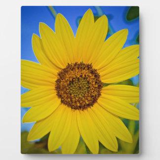 Big Yellow Sunflower Plaque
