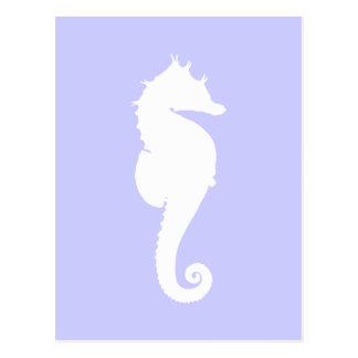 Bígaro y caballo de mar blanco postales