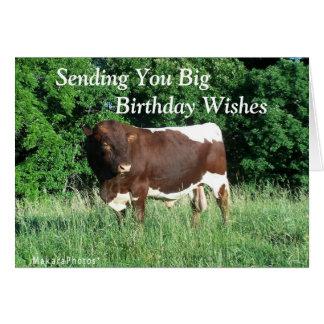 BigBdayWishes-customize Greeting Card