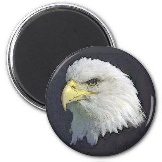 bigbird 2 inch round magnet