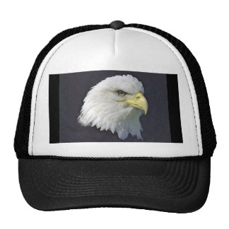 bigbird trucker hat