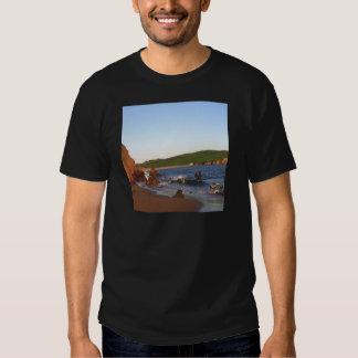 Bigbury en el mar polera