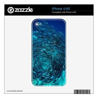 Bigeye trevally (Caranx sexfasciatus), swimming iPhone 4S Decals