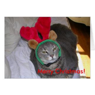 bigfatcat, Merry Christmas! Card