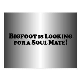 Bigfoot está buscando a un compañero del alma - bá tarjeta postal