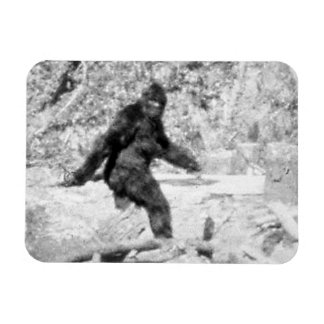 Bigfoot Iman