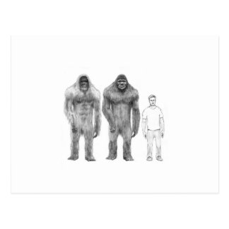 Bigfoot is Big Compared to Man Post Card