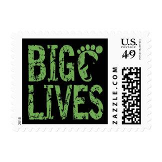 Bigfoot Lives Stamp