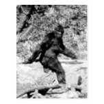 Bigfoot Postales