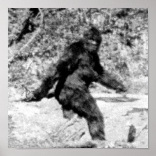 Bigfoot Póster