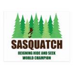 Bigfoot Sasquatch Hide and Seek World Champion Postcard