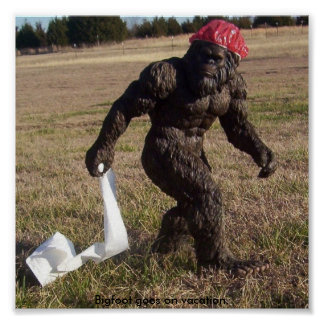 Bigfoot sighting poster