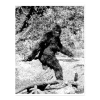 Bigfoot Tarjetas Postales