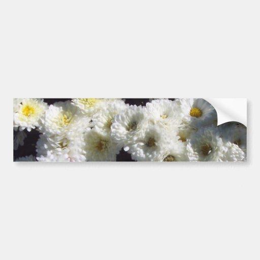 Bigger Flowers of White Car Bumper Sticker